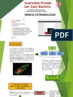 2. DIAPOSITIVAS-GENETICA-TEMA-9