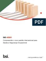 bsi-iso-45001- TRADUZIDA
