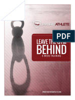 Hybrid Leave the Gym Behind .pdf