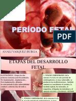 ANALI   vasquez PERIODO