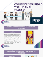 comite d seg y salud e l w 002.pdf
