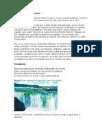Actividad 4. Notas Sobre Los Textos y Su Contexto