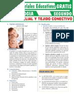 Tejido-Epitelial-y-Tejido-Conectivo-para-Segundo-Grado-de-Secundaria.pdf