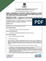 ACTA AUDIENCIA DE APERTURA SOBRE CM 016 DE 2019