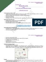 Parazitologie CURS Si LP 2.2 Flagelate 02.04.2020 (II)