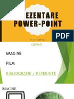 PREZENTARE POWER-POINT