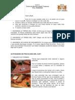 VAMOS A TRABAJAR EN CASA, ACTIVIDADES.pdf