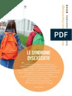 Syndrome Dysexecutif