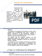 4.2 brigadas.pdf