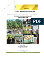 INFORME FINAL - Sistematización PC Banano 18_05_13