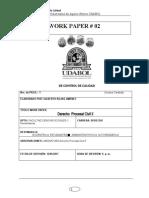 work paper Nro. 1 Derecho Civil II