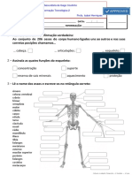 Ficha de Trabalho 2 Sistemas do Corpo Humano