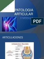PATOLOGIA_ARTICULAR