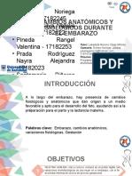 CAMBIOS ANATÓMICOS Y FISIOLÓGICOS PROYECTO DE ASIGNACIÓN, Finales.pptx