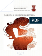 PROGRAMA-EDUCATIVO-PIP.pdf