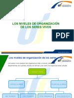 agrupaciondeorganismos-140428115602-phpapp01