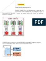 Biologia Documento 3