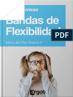 MUESTRA BANDAS DE FLEXIBILIDAD