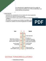 termoregulación (1) (1).pdf