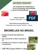 Anacleto Bornancin Bromelias