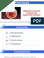 2. SEGUNDA Y TERCERA SEMANA DEL DESARROLLO.pdf