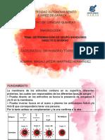 Determinación de Grupo Sanguíneo Directo e Inverso.