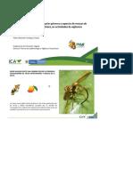 Reconocimiento de mosca de la fruta