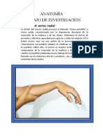 Consulta de anatomía