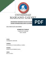 CONQUISTA DE GUATEMALA ANTONIO STEVENS MENDEZ GUERRA