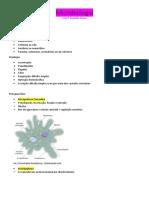 microbiologia - protozoários
