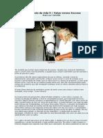O significado da vida 9.pdf