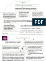 La frenología - El centro del lenguaje..docx