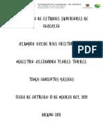 Conceptoss basicos A..pdf