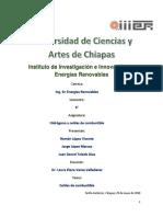 CELDAS DE COMBUSTIBLE