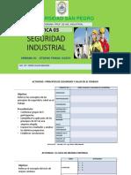 PRACTICA 03 TALLER IMPLEMENTACION DEL SGSST-PHVA-ETAPA