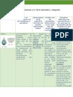 Actividad-2 Proyectando a La Tierra.pdf