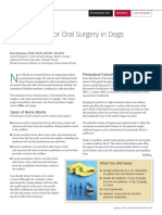 Nerve Blocks for Oral Surgery in dogs.pdf