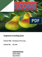 pear-151209182222-lva1-app6892.pdf
