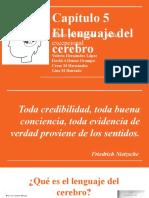 Exposicion lenguaje del cerebro.pptx