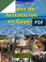 TIPOS DE INSTALACION DE CUYES Por