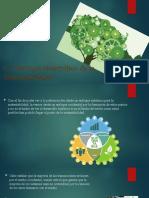 1.4 Enfoque sistemático de la Sustentabilidad.pptx
