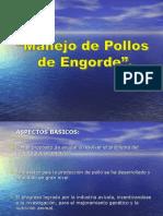 MANEJO DE POLLOS DE ENGORDE Por