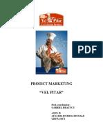 Proiect Marketing - Vel Pitar