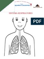 CIENCIA Y AMBIENTE - Sistema Respiratorio