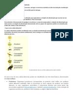 Cadeia alimentar e ciclos biogeoquímicos 1º.docx