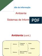 Gestão da Informação_Ambiente_Sistemas