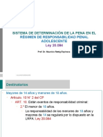 3. DETERMINACION SANCIÓN LRPA RETTIG