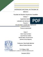 protocolo-2-con-correcciones