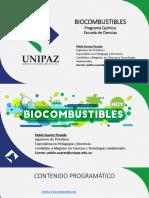 BIOCOMBUSTIBLES.pdf