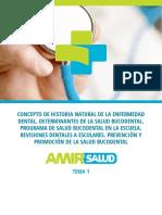 Tema_Ejemplo_Odontología